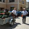 Traktortreffen 2016 Rottenmann_158
