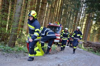 Waldbrand am Lärcheck